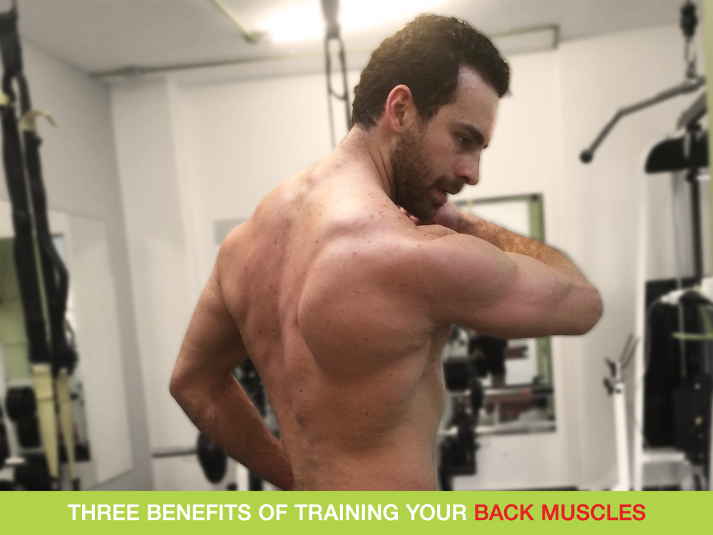 Three Benefits Of Training Your Back Muscles - Healthy Lifestyle
